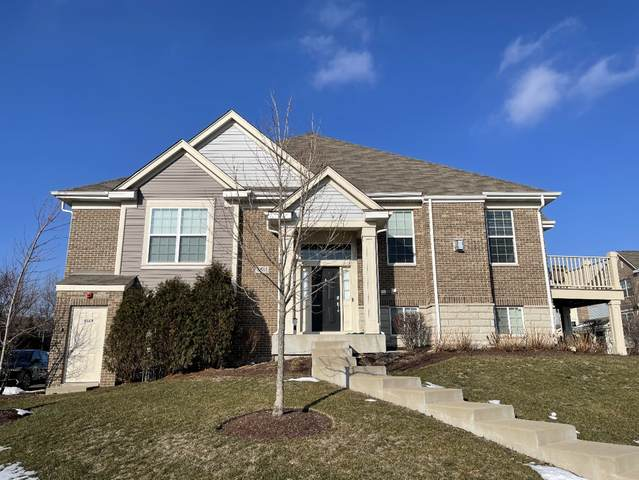2883 Henley Lane, Naperville, IL 60540 (MLS #10971067) :: The Wexler Group at Keller Williams Preferred Realty