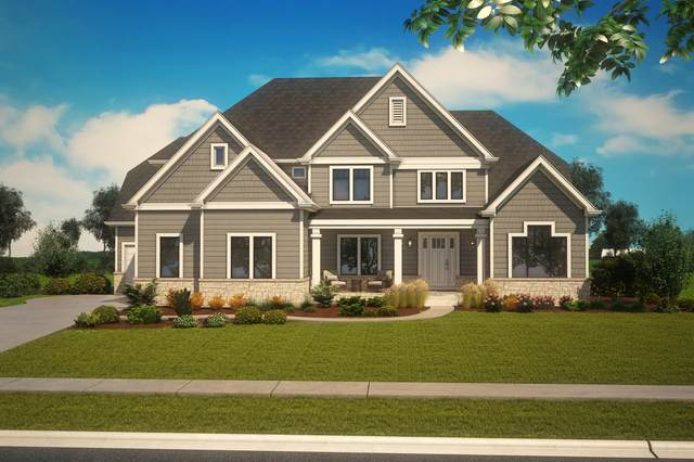 1237 Bush Boulevard, Bolingbrook, IL 60490 (MLS #10971158) :: Angela Walker Homes Real Estate Group
