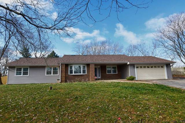 92 Long Avenue, Schaumburg, IL 60193 (MLS #10971231) :: The Wexler Group at Keller Williams Preferred Realty