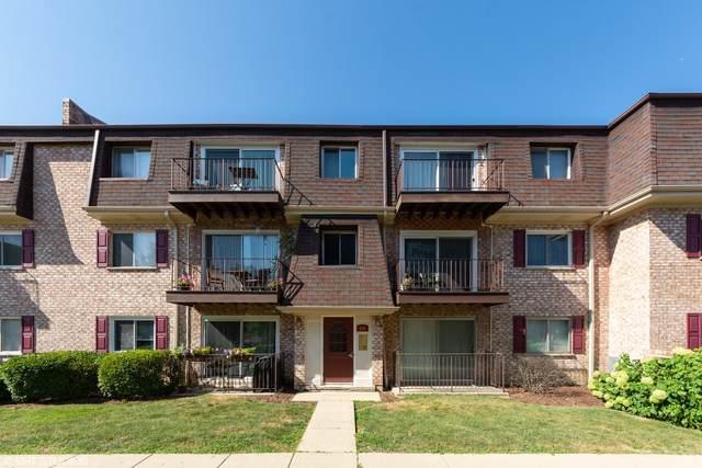 876 S Plum Grove Road #307, Palatine, IL 60067 (MLS #10971434) :: Helen Oliveri Real Estate