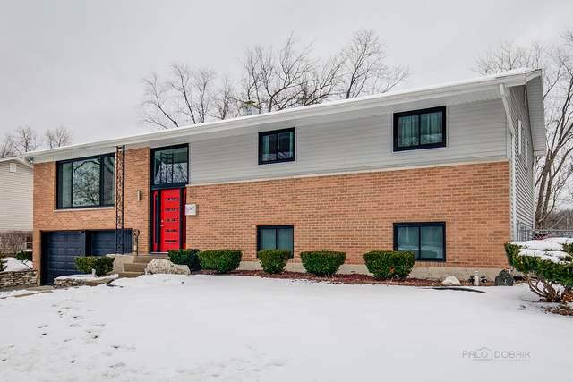 231 N Williams Drive, Palatine, IL 60074 (MLS #10971541) :: Helen Oliveri Real Estate