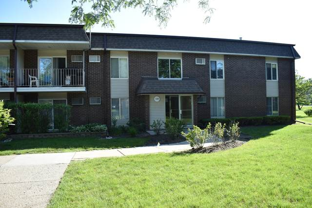 1149 Miller Lane #109, Buffalo Grove, IL 60089 (MLS #10971595) :: Jacqui Miller Homes