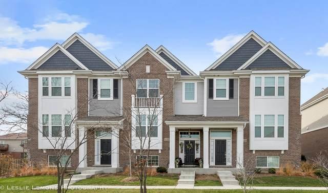 1120 E Bauer Road, Naperville, IL 60563 (MLS #10971628) :: Helen Oliveri Real Estate