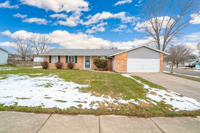 232 Hampshire Lane, Bolingbrook, IL 60440 (MLS #10971708) :: Janet Jurich