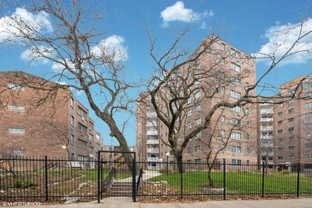 1132 W Lunt Avenue 2D, Chicago, IL 60626 (MLS #10971835) :: Helen Oliveri Real Estate