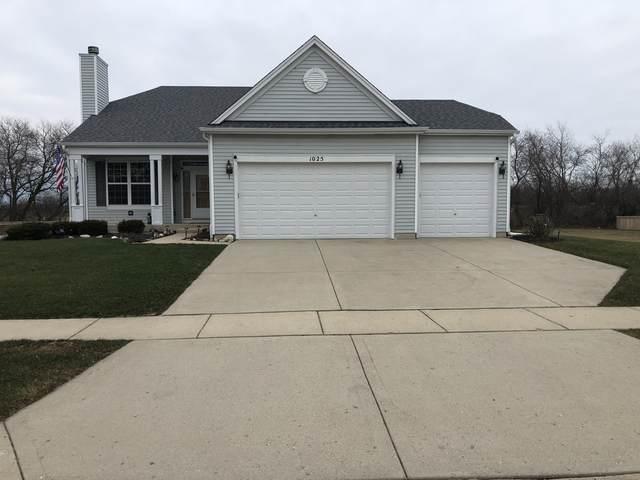 1025 Mackenzie Drive, Antioch, IL 60002 (MLS #10971912) :: Schoon Family Group