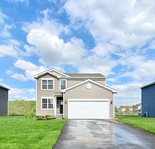 515 S Stone Bluff Drive, Romeoville, IL 60446 (MLS #10971993) :: Angela Walker Homes Real Estate Group