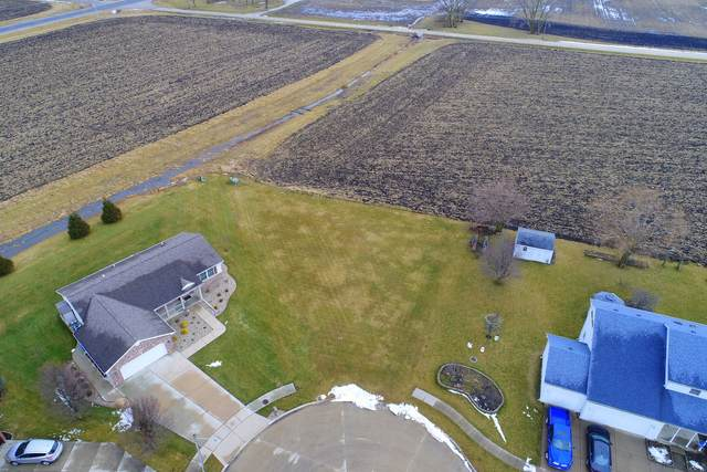 305 Julie Drive, Dwight, IL 60420 (MLS #10972097) :: The Wexler Group at Keller Williams Preferred Realty