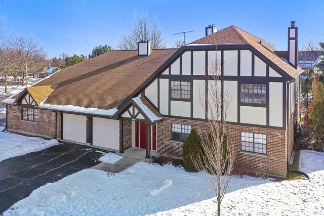 320 Deer Glen Way D, Bloomingdale, IL 60108 (MLS #10972123) :: Janet Jurich