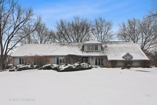 2025 Cheviot Drive, Inverness, IL 60010 (MLS #10972160) :: The Dena Furlow Team - Keller Williams Realty