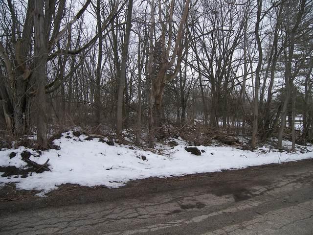 0 E 509th Road, Lasalle, IL 61301 (MLS #10972225) :: Helen Oliveri Real Estate