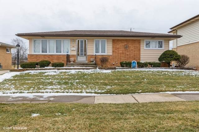 66 E Craig Drive, Chicago Heights, IL 60411 (MLS #10972330) :: Janet Jurich