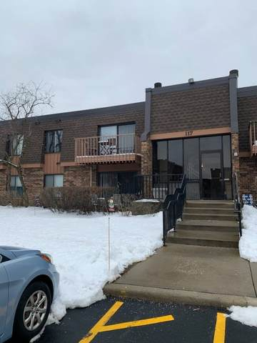 117 Mullingar Court 2A, Schaumburg, IL 60193 (MLS #10972357) :: The Wexler Group at Keller Williams Preferred Realty