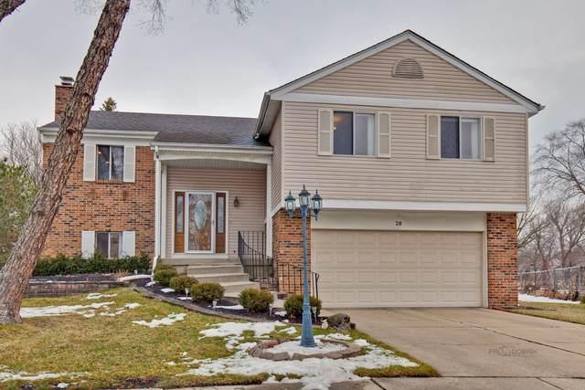28 Lindon Lane, Vernon Hills, IL 60061 (MLS #10972468) :: Helen Oliveri Real Estate