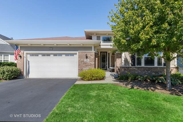 2815 Edgebrook Court, Naperville, IL 60564 (MLS #10972532) :: The Dena Furlow Team - Keller Williams Realty