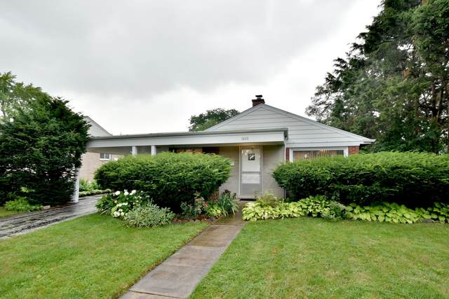 1603 S Cumberland Avenue, Park Ridge, IL 60068 (MLS #10972568) :: The Wexler Group at Keller Williams Preferred Realty