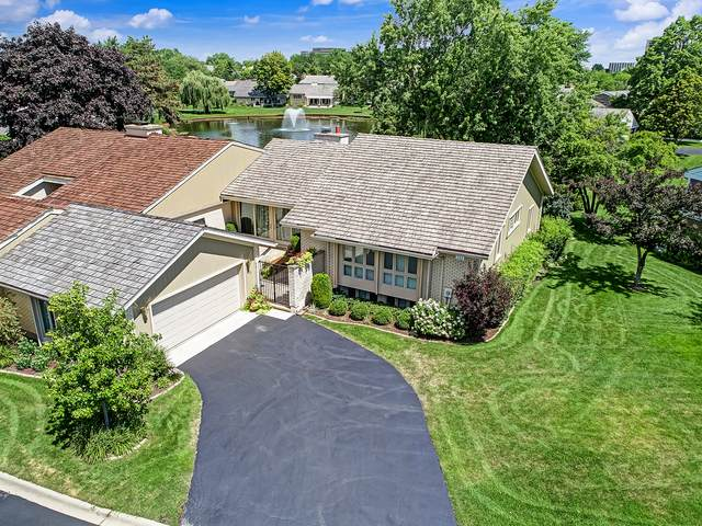 201 Briarwood Loop, Oak Brook, IL 60523 (MLS #10972571) :: Janet Jurich
