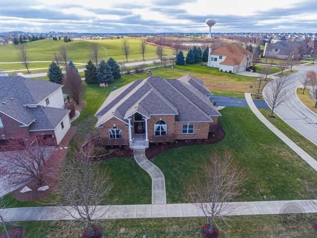 13002 Silverleaf Court, Plainfield, IL 60585 (MLS #10972618) :: The Spaniak Team