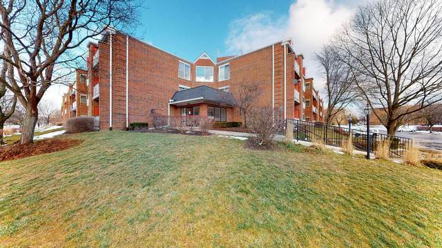 805 Leicester Road B302, Elk Grove Village, IL 60007 (MLS #10972680) :: Helen Oliveri Real Estate