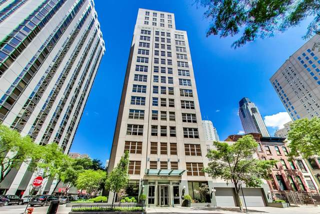 1035 N Dearborn Parkway 15W, Chicago, IL 60610 (MLS #10972710) :: Suburban Life Realty