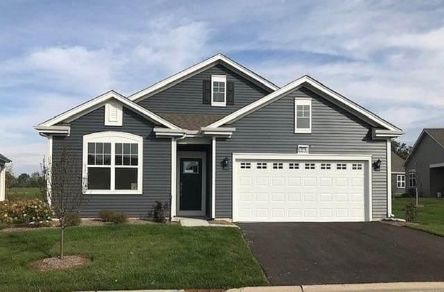1017 Fitzwilliam Way, North Aurora, IL 60542 (MLS #10972728) :: Helen Oliveri Real Estate