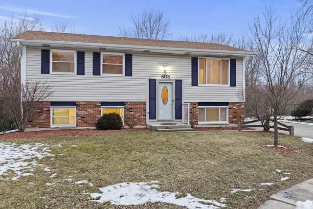 808 Poplar Lane, Bolingbrook, IL 60440 (MLS #10972777) :: Angela Walker Homes Real Estate Group