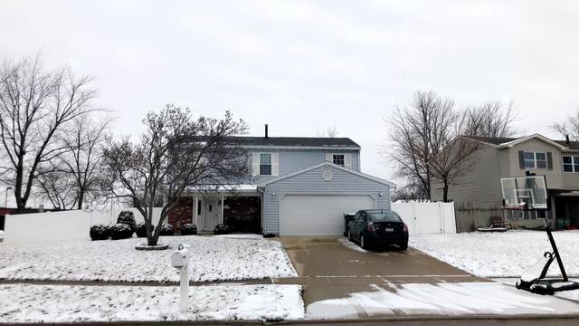 20120 S Rosewood Drive, Frankfort, IL 60423 (MLS #10973126) :: Schoon Family Group