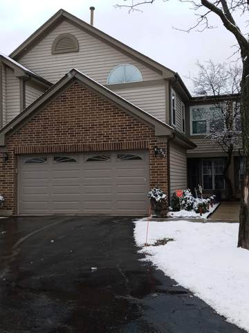 237 Old Oak Court W #204, Buffalo Grove, IL 60089 (MLS #10973257) :: Touchstone Group