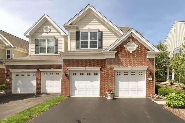 1138 Falcon Ridge Drive, Elgin, IL 60124 (MLS #10973285) :: Touchstone Group