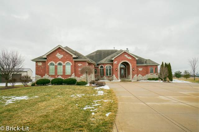 10125 W Sweet Grass Circle, Monee, IL 60449 (MLS #10973297) :: The Dena Furlow Team - Keller Williams Realty