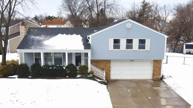 500 Allonby Drive, Schaumburg, IL 60194 (MLS #10973496) :: Jacqui Miller Homes