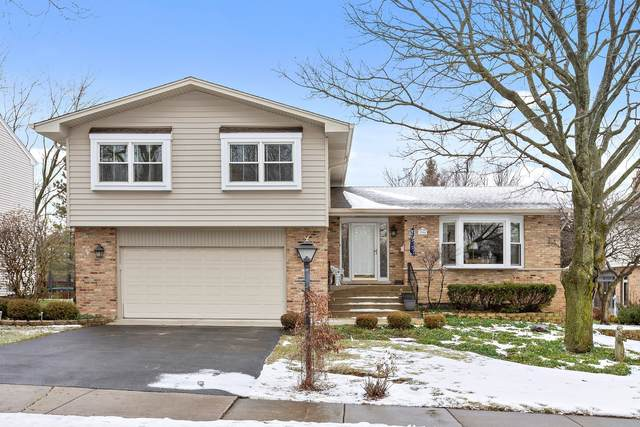 3904 Saratoga Avenue, Downers Grove, IL 60515 (MLS #10973628) :: Janet Jurich