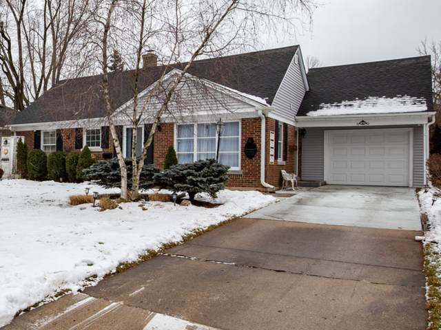 716 S Evergreen Avenue, Arlington Heights, IL 60005 (MLS #10973679) :: Touchstone Group