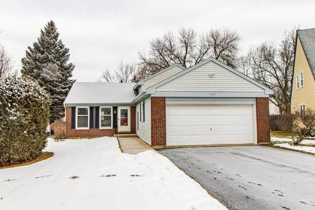 204 Court Of Ash, Vernon Hills, IL 60061 (MLS #10973802) :: Jacqui Miller Homes