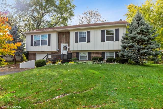 36 Red Haw Lane, Lake Zurich, IL 60047 (MLS #10973889) :: The Spaniak Team