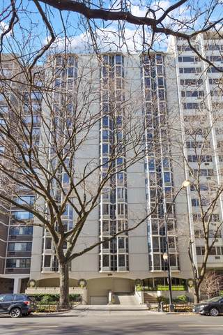 1340 N Dearborn Street 7E, Chicago, IL 60610 (MLS #10973894) :: John Lyons Real Estate