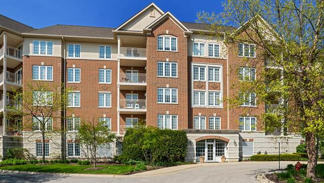 640 Robert York Avenue #409, Deerfield, IL 60015 (MLS #10974007) :: The Spaniak Team
