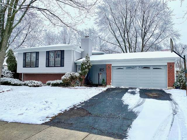 354 King Arthur Court, Bolingbrook, IL 60440 (MLS #10974023) :: The Spaniak Team