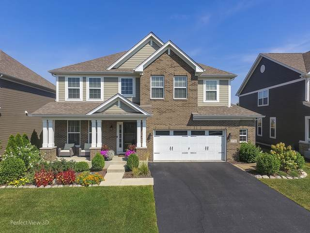 13768 Anne Drive, Lemont, IL 60439 (MLS #10974056) :: Schoon Family Group