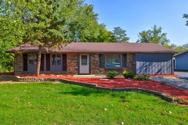 821 S Braintree Drive, Schaumburg, IL 60193 (MLS #10974098) :: Helen Oliveri Real Estate