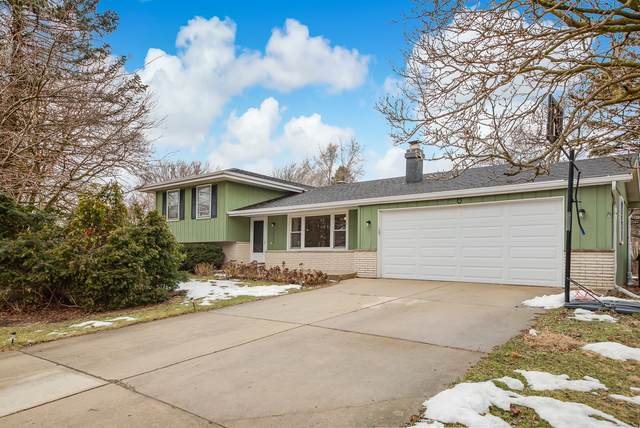24448 Davids Court, Naperville, IL 60564 (MLS #10974107) :: The Spaniak Team
