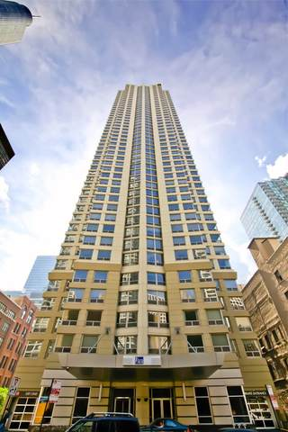 440 N Wabash Avenue #505, Chicago, IL 60611 (MLS #10974281) :: The Wexler Group at Keller Williams Preferred Realty