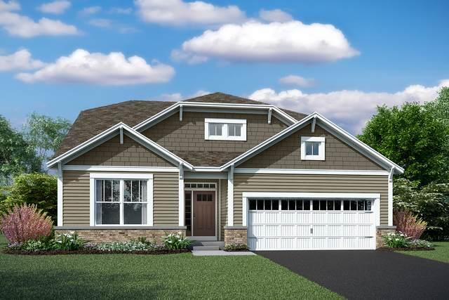 23634 N. Birkdale Lot #34 Drive, Kildeer, IL 60047 (MLS #10974290) :: Jacqui Miller Homes