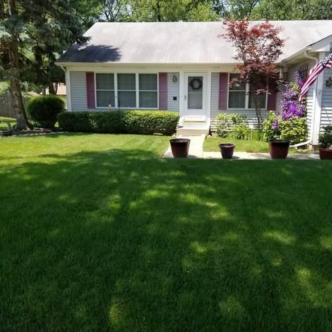 740 Lilac Drive, Algonquin, IL 60102 (MLS #10974379) :: Janet Jurich