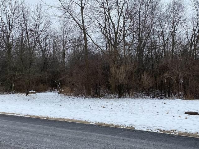 712 Wildwood Drive, Joliet, IL 60431 (MLS #10974513) :: Helen Oliveri Real Estate