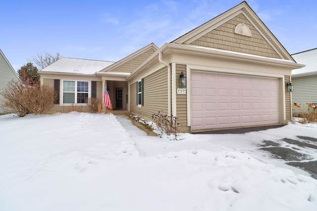 12132 Latham Trail, Huntley, IL 60142 (MLS #10974540) :: Schoon Family Group