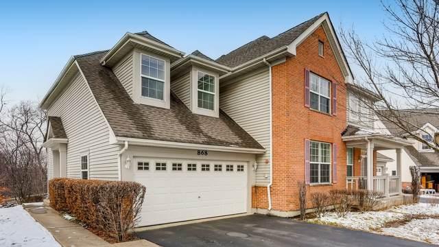 868 Linden Circle, Hoffman Estates, IL 60194 (MLS #10974563) :: Helen Oliveri Real Estate