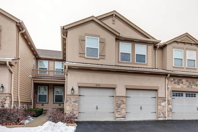 1830 N Crenshaw Circle Circle #1830, Vernon Hills, IL 60061 (MLS #10974641) :: Helen Oliveri Real Estate