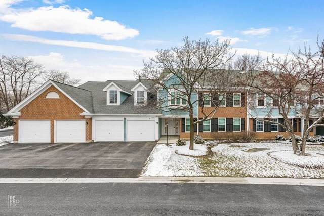 1400 Clove Court C, Mount Prospect, IL 60056 (MLS #10974849) :: Helen Oliveri Real Estate