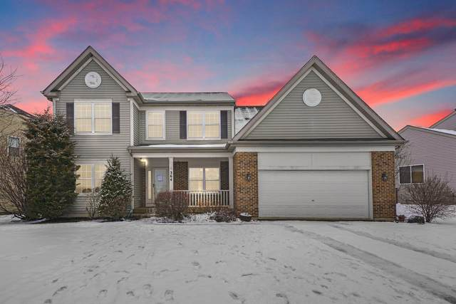 364 Messenger Circle, North Aurora, IL 60542 (MLS #10974905) :: Ryan Dallas Real Estate